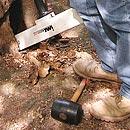 Gerätetechnische Baum-Untersuchungen