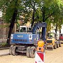 Baubegleitende Baumgutachten